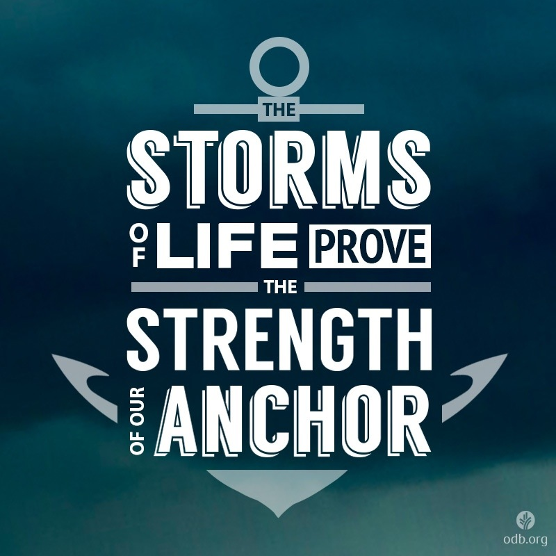 The storms of life the storms of life prove the strength of our